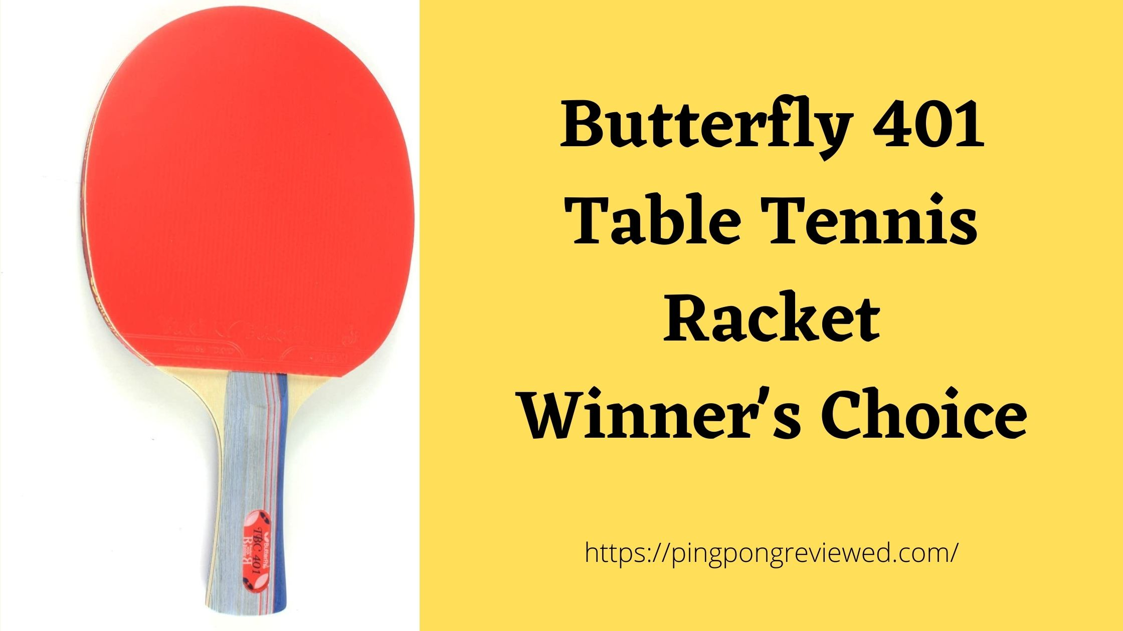 Butterfly 401 Table Tennis Racket